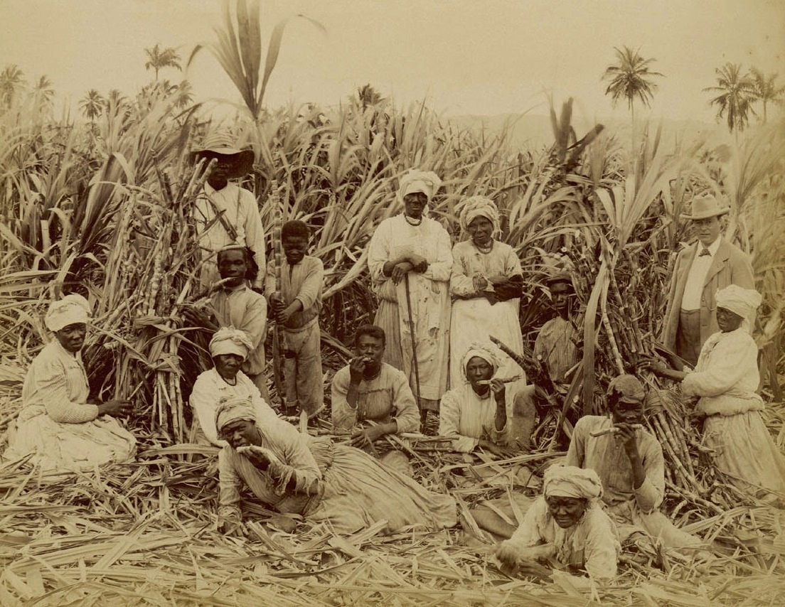 african american slaves treated inhumanely in the sugar islands of barbados and jamaica Cuba remained a spanish possession for almost 400 years (1511–1898), with an economy based on plantation agriculture, mining, and the export of sugar, coffee, and tobacco to europe and later to north america the work was done primarily by african slaves brought to the island the small land-owning elite of spanish settlers held.